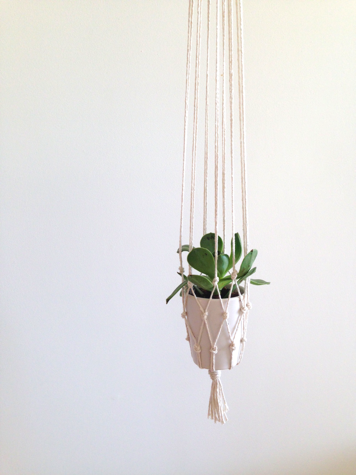 how to make a macrame plant holder easy diy macrame plant holder a spoonful of pretty 2178